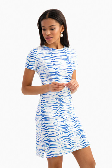 horizon blue zebra carter dress