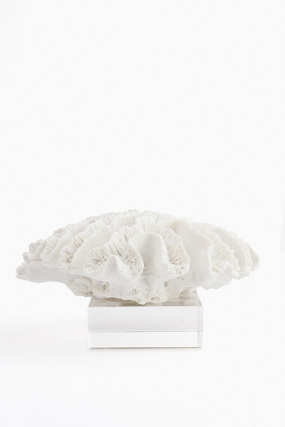 small coral sculpture