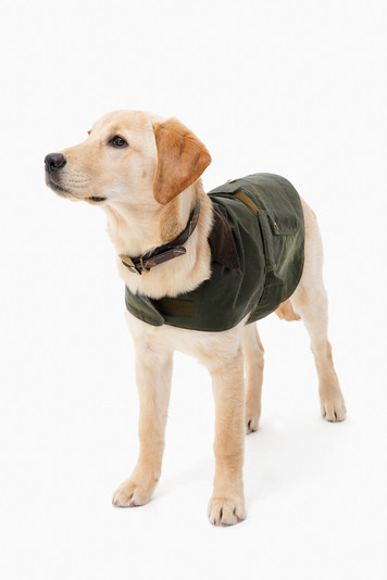 lightweight wax dog coat