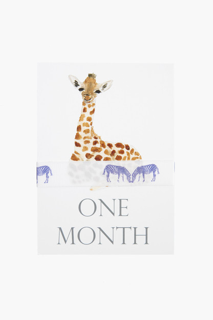 baby month cards