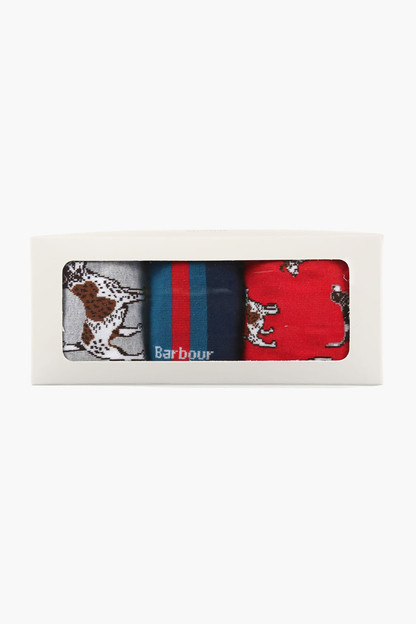 red dog stripe sock giftbox