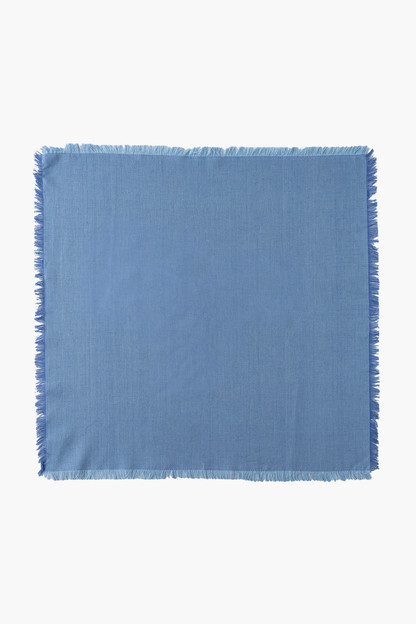 chambray essex napkins (set of 4)
