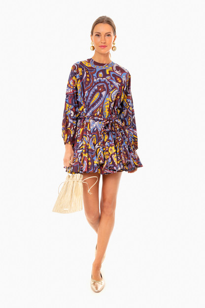 retro paisley ella dress