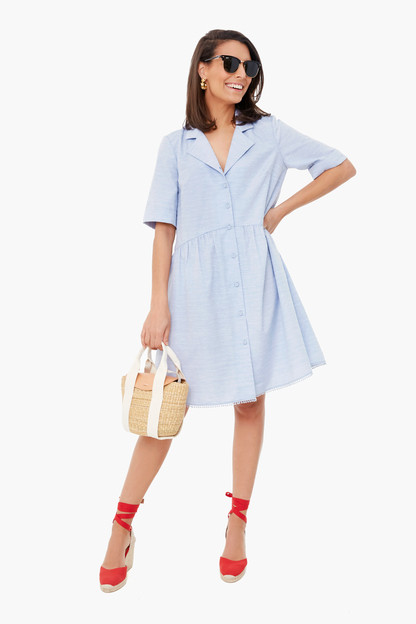 swiss dot royal shirt dress