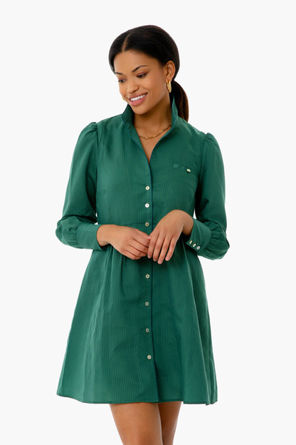 green and blue striped florence shirt dress