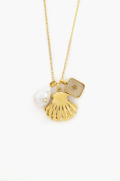 natural beauty starter charm necklace