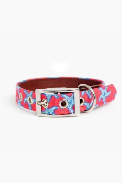 starfish needlepoint dog collar